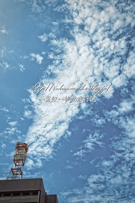 下り坂を告げる高積雲。_f0235723_21103473.jpg