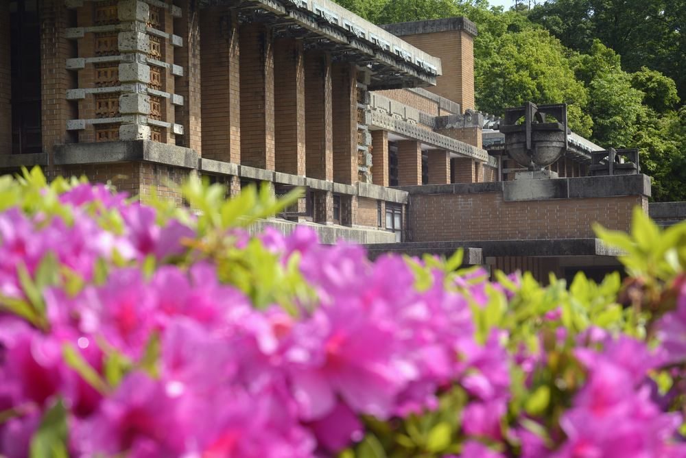 帝国ホテル中央玄関とツツジの花_e0373930_10080343.jpg
