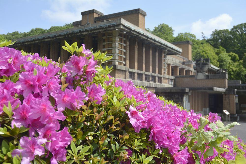帝国ホテル中央玄関とツツジの花_e0373930_10080367.jpg