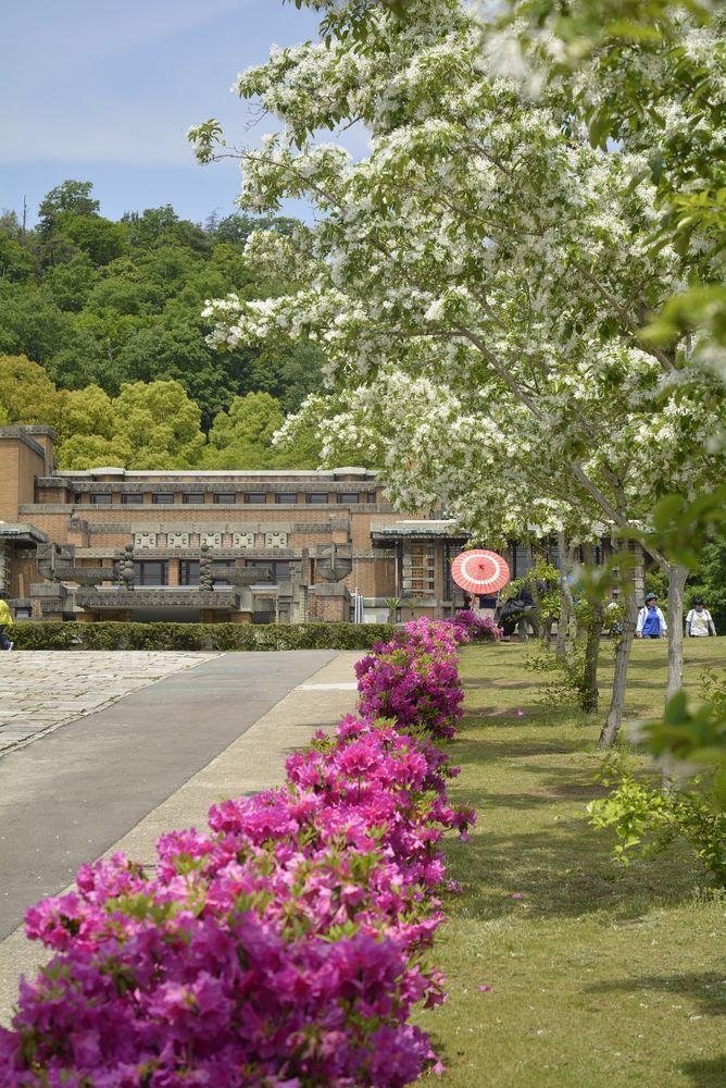 帝国ホテル中央玄関とツツジの花_e0373930_10080492.jpg