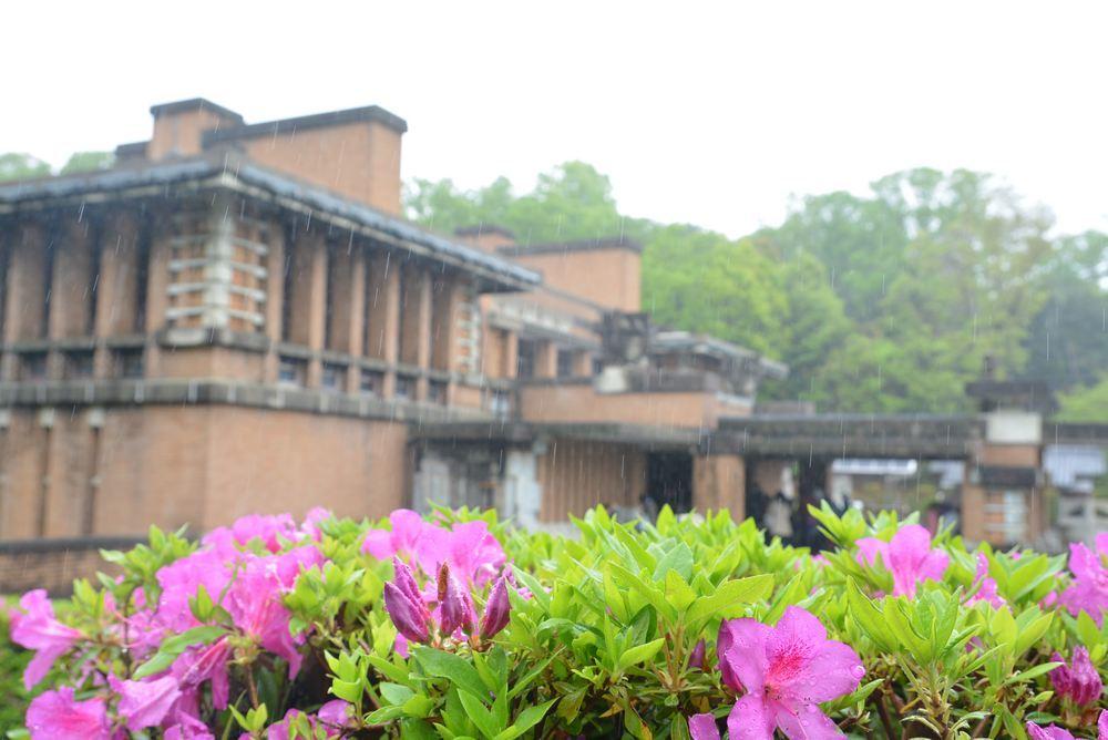 帝国ホテル中央玄関とツツジの花_e0373930_11524121.jpg