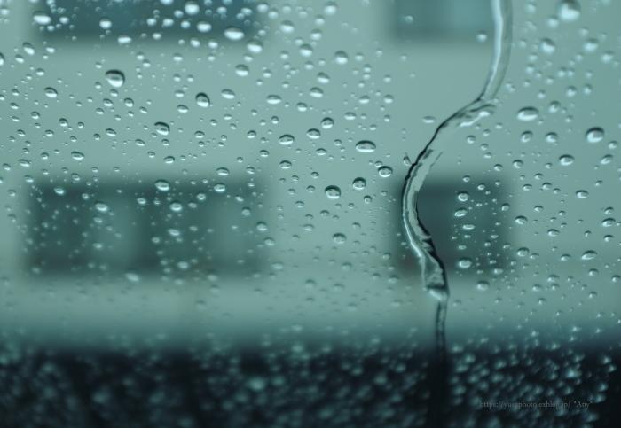 雨降り_e0347431_16470916.jpg