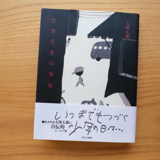 五味太郎さん「ときどきの少年」_a0039934_11515353.jpg