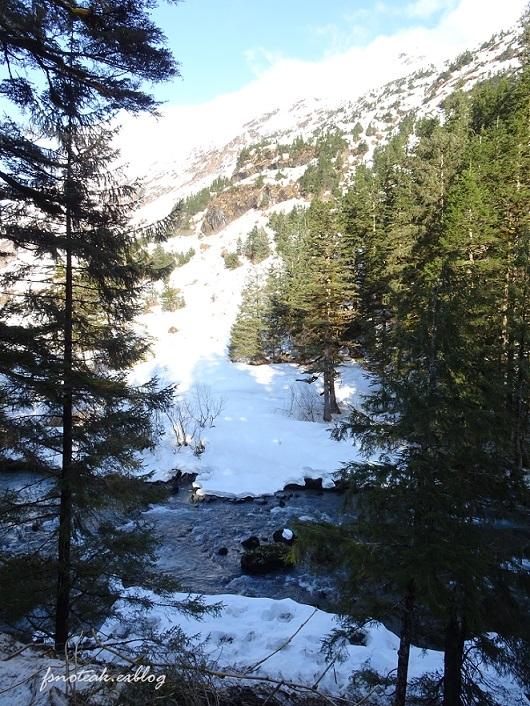 湖の北 芽吹き 水の流れ_d0356844_01215927.jpg