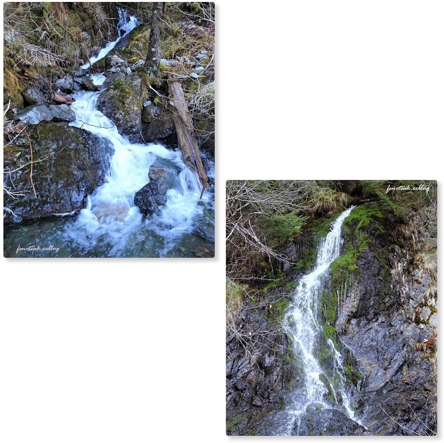 湖の北 芽吹き 水の流れ_d0356844_01263197.jpg