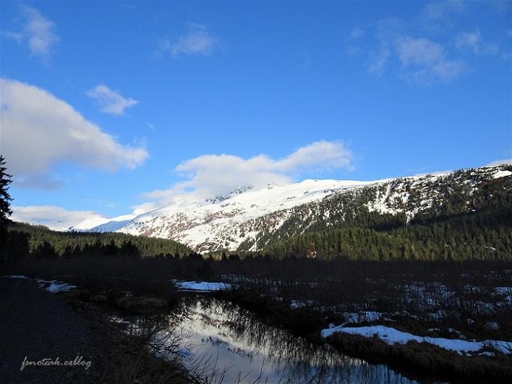 湖の北 芽吹き 水の流れ_d0356844_01295112.jpg
