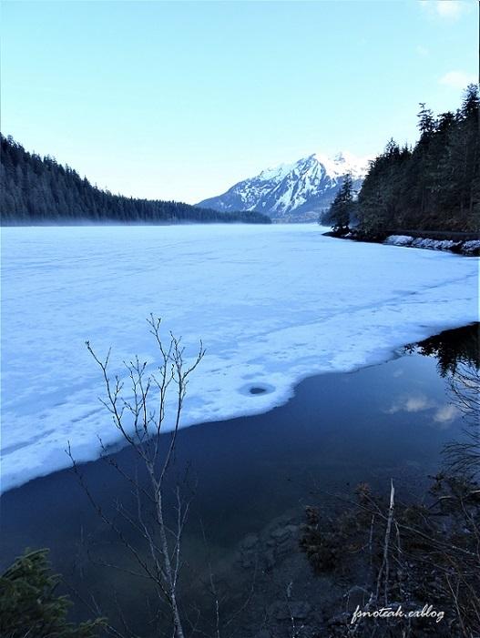 湖の北 芽吹き 水の流れ_d0356844_01335358.jpg