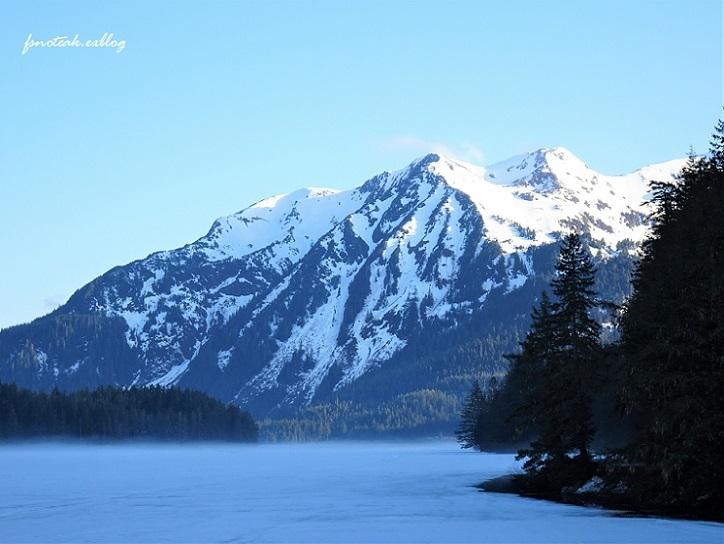 湖の北 芽吹き 水の流れ_d0356844_01343770.jpg