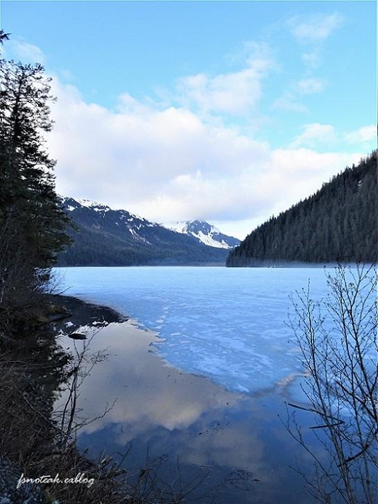 湖の北 芽吹き 水の流れ_d0356844_01350289.jpg