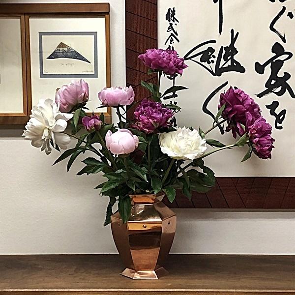 芍薬の花_c0019551_17223021.jpg
