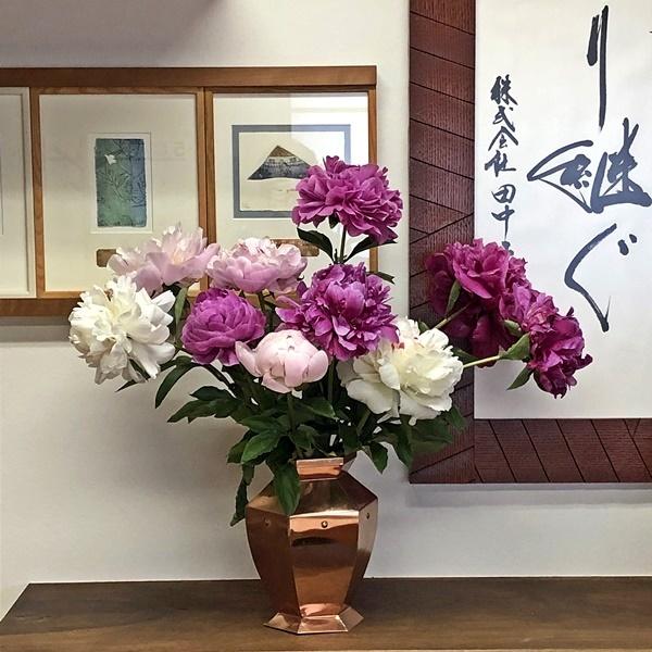 芍薬の花_c0019551_17224637.jpg