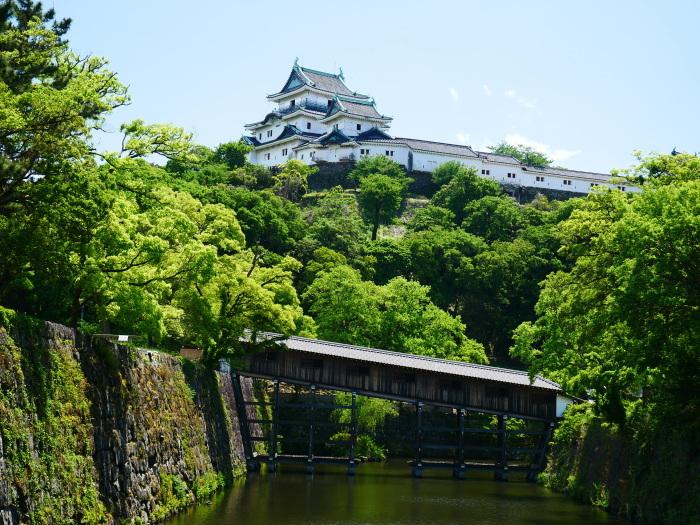 新緑の和歌山城  2020-05-18 00:00   _b0093754_21163306.jpg
