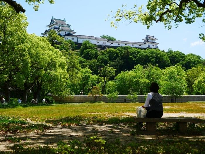 新緑の和歌山城  2020-05-18 00:00   _b0093754_21164406.jpg