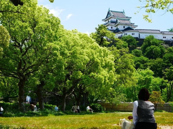 新緑の和歌山城  2020-05-18 00:00   _b0093754_21165502.jpg