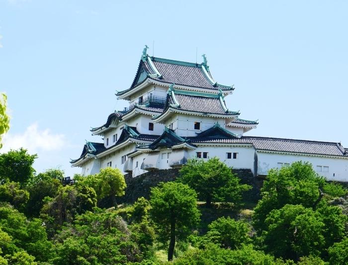 新緑の和歌山城  2020-05-18 00:00   _b0093754_21170425.jpg
