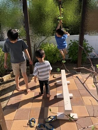 お庭改造計画2020-vol.4_d0291758_2323639.jpg