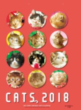 《 5年間の 猫さん絵暦 》_c0328479_16023963.jpg