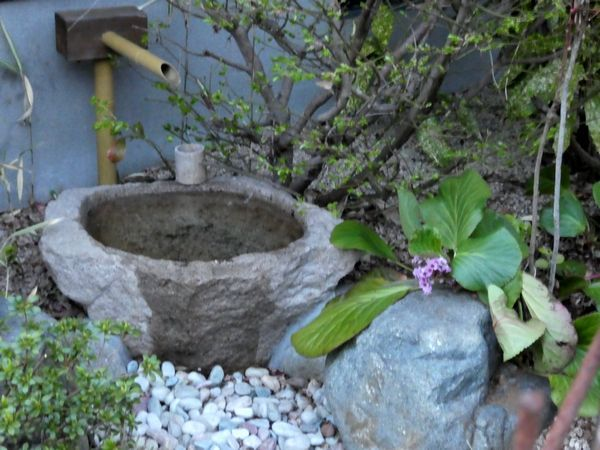 日本庭園整備_e0365880_21074121.jpg