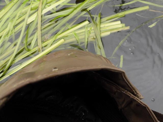 水位がこれまでになく高い田宿川  川そうじでカメラが水没_f0141310_08025313.jpg
