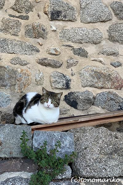 フランスで最も美しい村「ウス」_c0024345_17092941.jpg