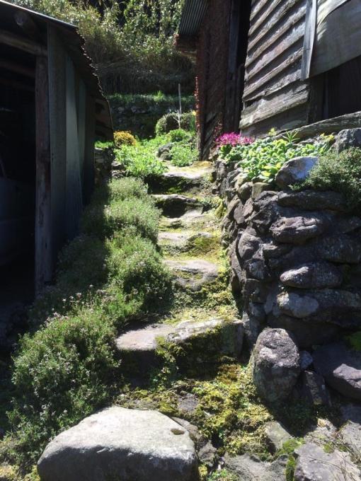 古い石垣が好きなんです。_f0182246_20491381.jpg
