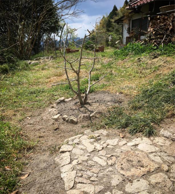 古い石垣が好きなんです。_f0182246_20521261.jpg