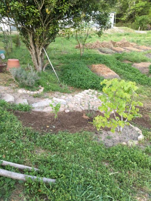 古い石垣が好きなんです。_f0182246_20542007.jpg