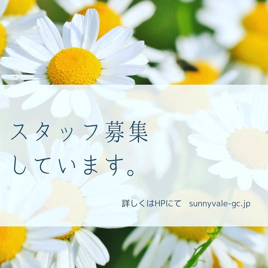 入荷情報~_f0220152_17013292.jpg