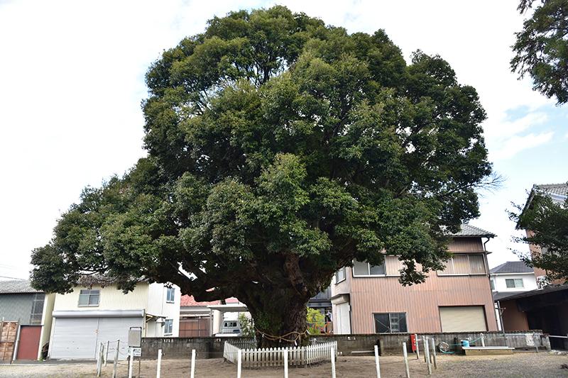 東海道 亀山宿から四日市宿を行く_e0164563_09114238.jpg