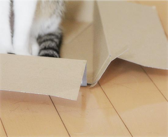 永遠の箱なんてない_a0389088_10211494.jpg