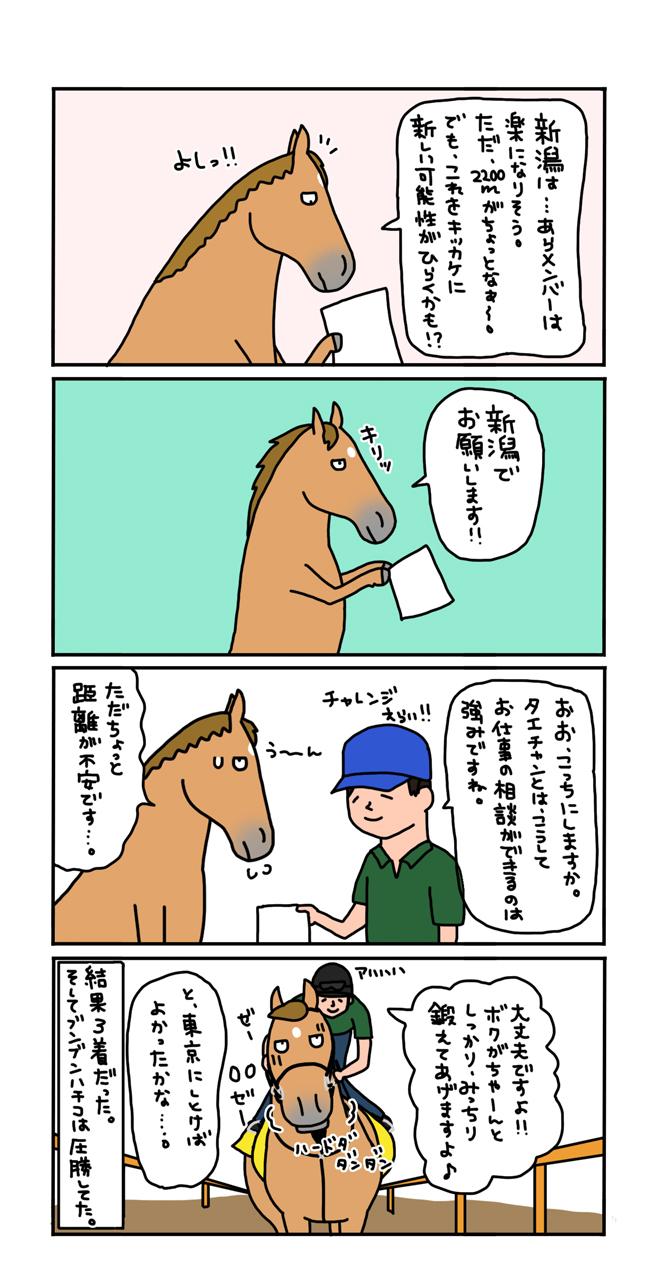 お母さんは競走馬・日常編_a0093189_21510083.jpg