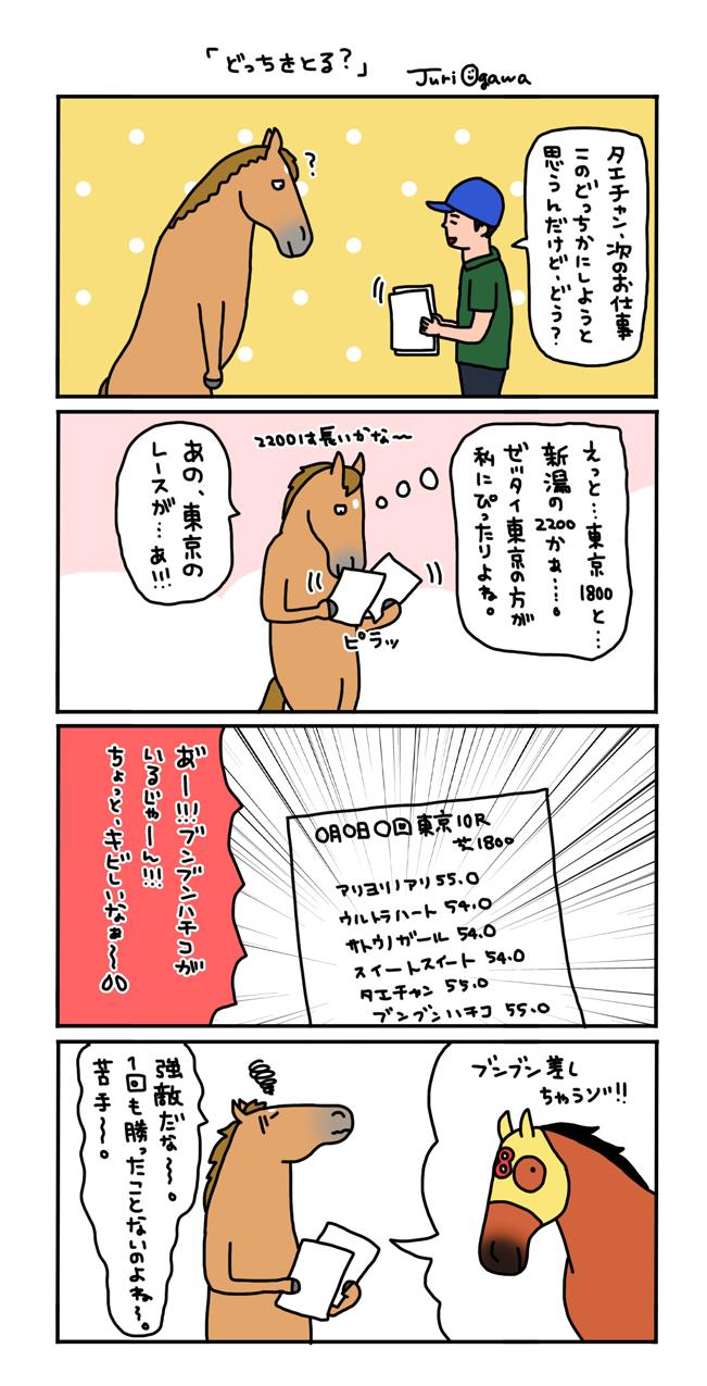 お母さんは競走馬・日常編_a0093189_21510221.jpg