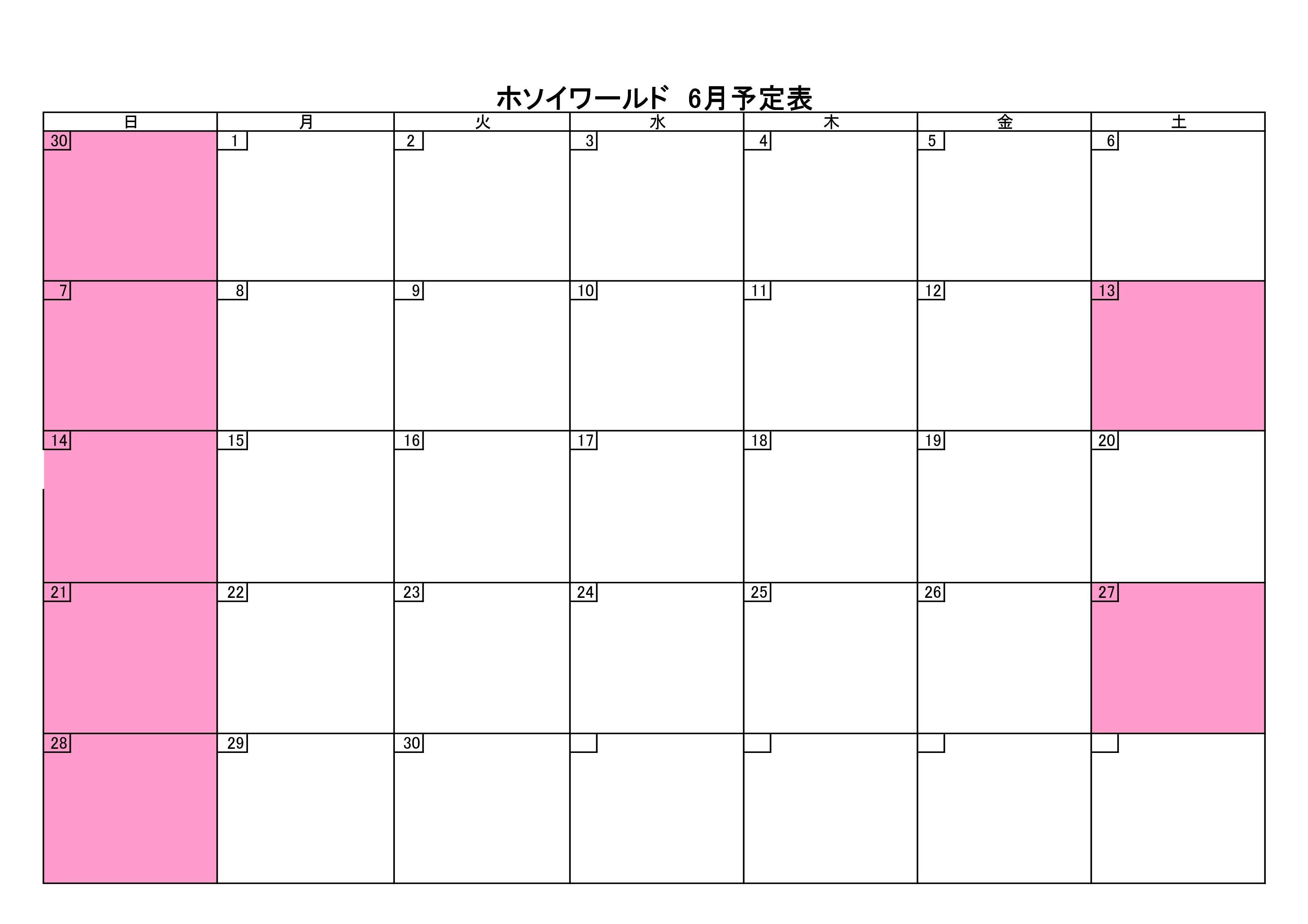 6月の予定表_b0136590_18332664.jpg