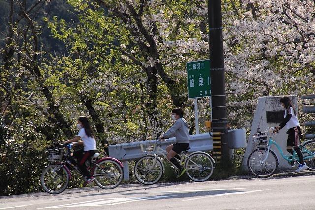 馬瀬・船津の桜散策(撮影:4月8日)_e0321325_16201200.jpg