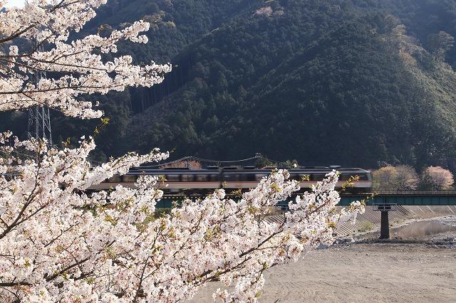 馬瀬・船津の桜散策(撮影:4月8日)_e0321325_16213539.jpg