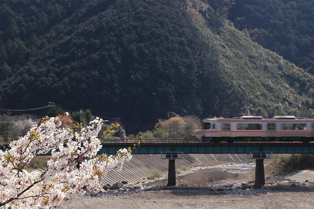 馬瀬・船津の桜散策(撮影:4月8日)_e0321325_16292180.jpg