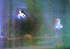 7-11/30-48 舞台「小林一茶」井上ひさし作 木村光一演出 こまつ座の時代(アングラの帝王から新劇へ)_f0325673_14104802.jpg