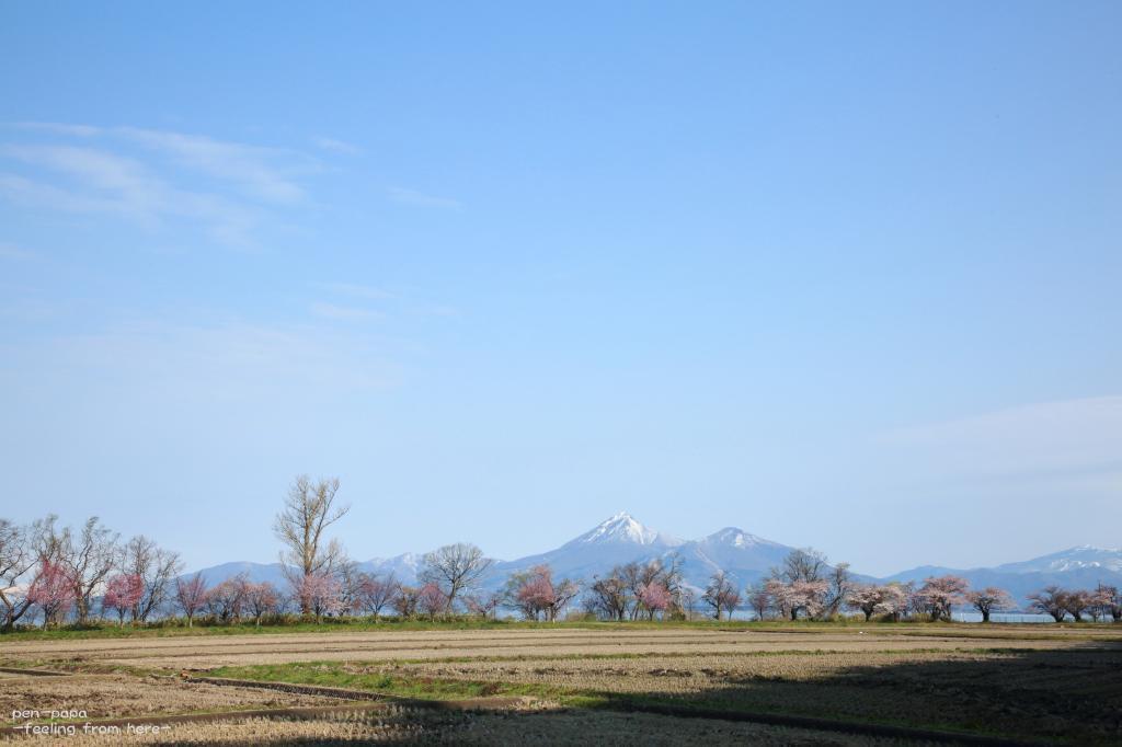 昭和の日 磐梯山の見えるところ_c0356480_20413341.jpg