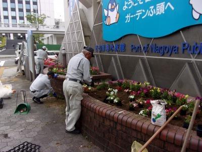 ガーデンふ頭総合案内所前花壇の植替えR2.5.18_d0338682_14171235.jpg