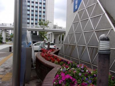 ガーデンふ頭総合案内所前花壇の植替えR2.5.18_d0338682_14172756.jpg