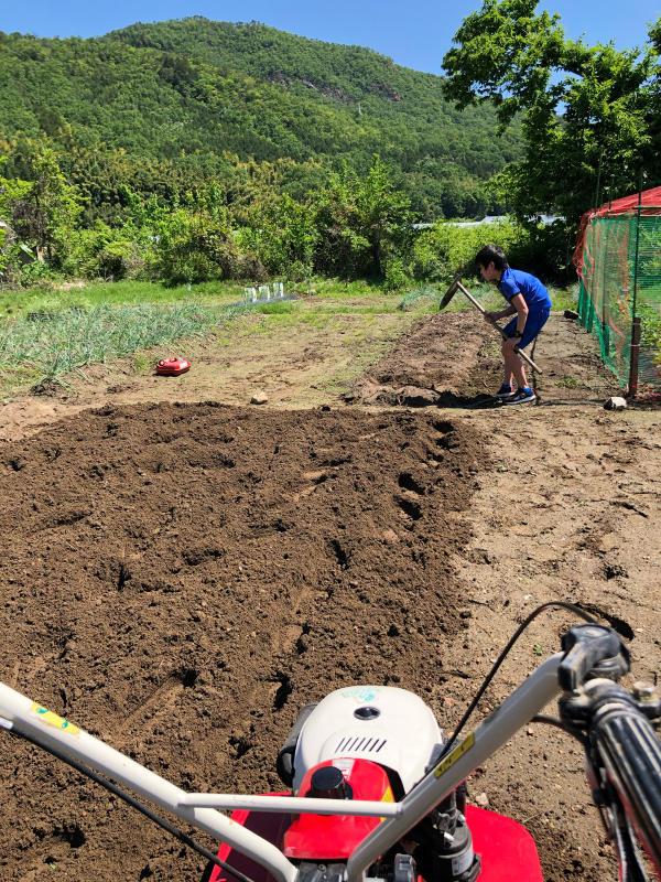 農は業が深い_b0176185_18145232.jpg