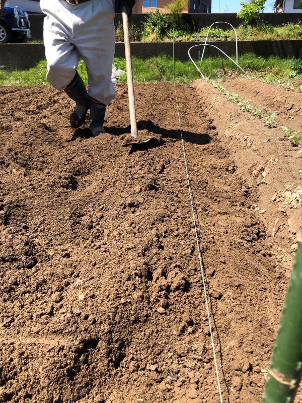 農は業が深い_b0176185_18145413.jpg