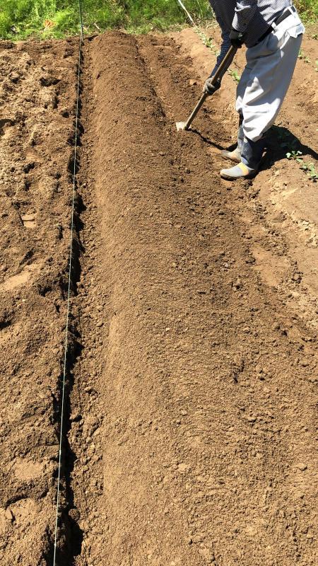 農は業が深い_b0176185_18145684.jpg