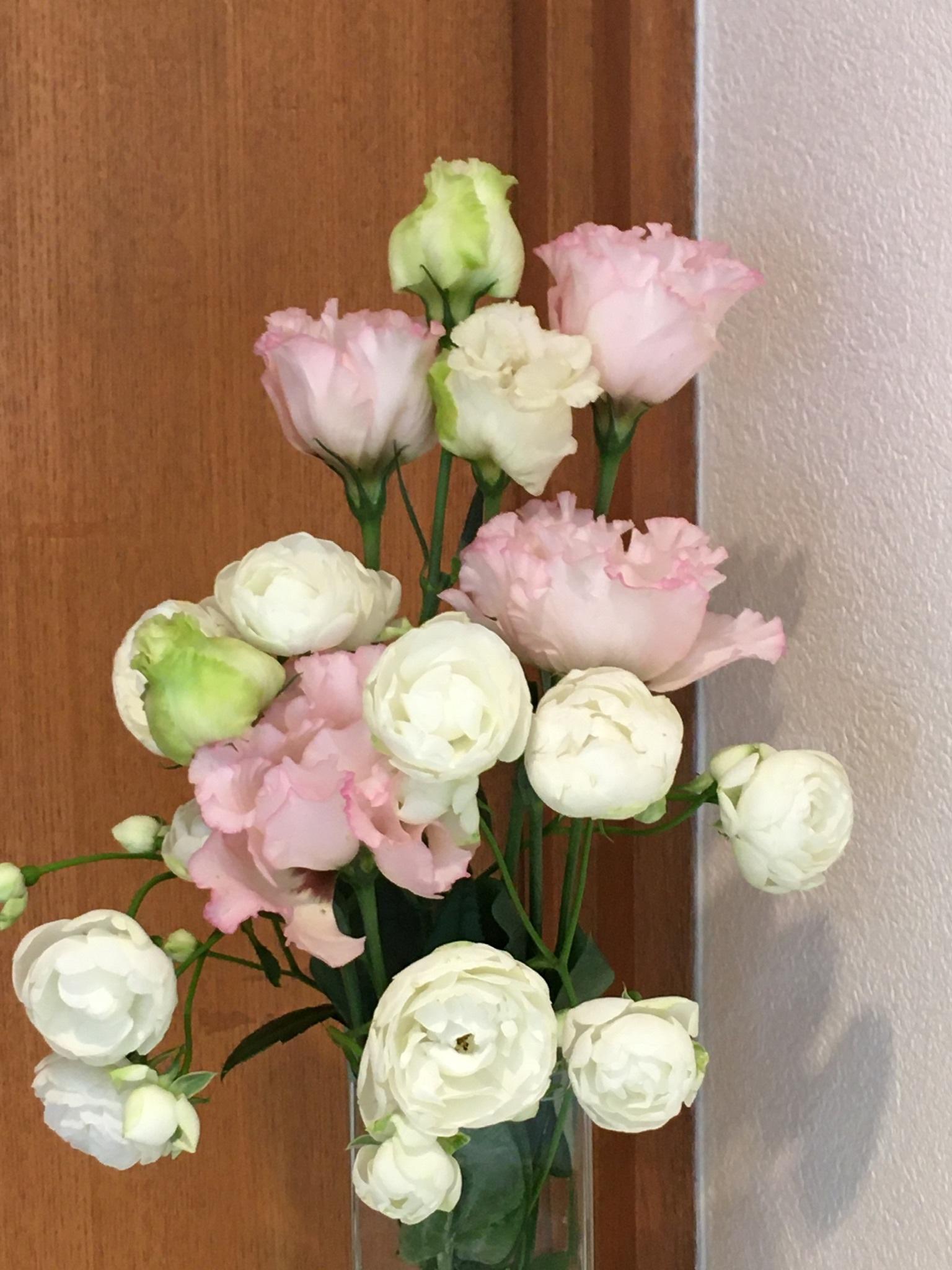 お花を買いに行きました。_f0347891_20433029.jpeg