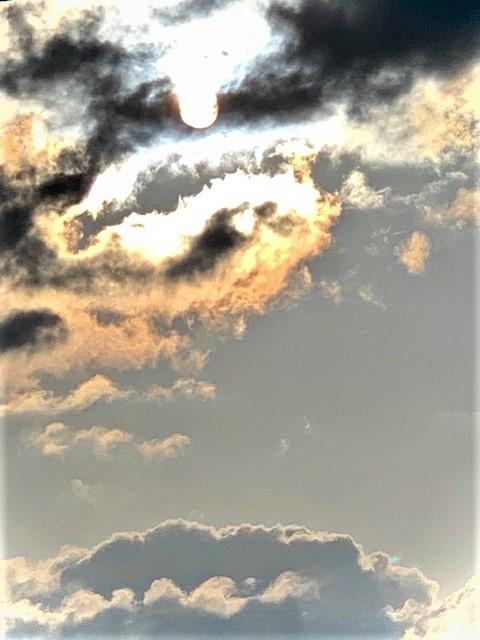 嵐のあと_a0165898_18250445.jpg