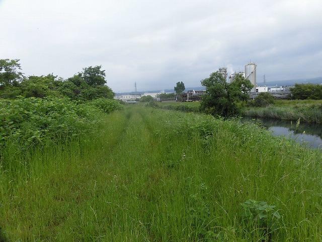 いや~結構歩いた12,000歩 そうだ!沼川プロジェクトの「滝川コース」の朝散歩_f0141310_07443761.jpg