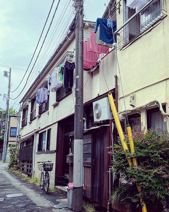 中野区鷺宮 / iPhone 11_c0334533_20261330.jpg