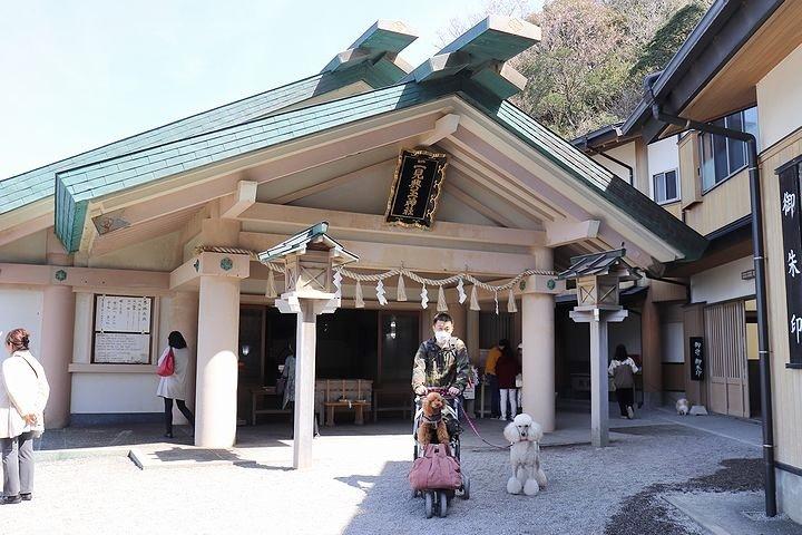 二見浦輿玉神社と夫婦岩【誕生日旅行2】_b0111376_14542266.jpg