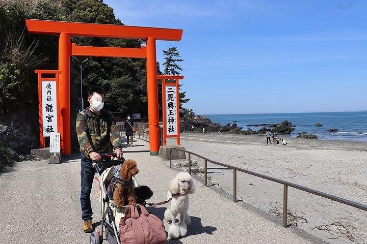 二見浦輿玉神社と夫婦岩【誕生日旅行2】_b0111376_15232426.jpg