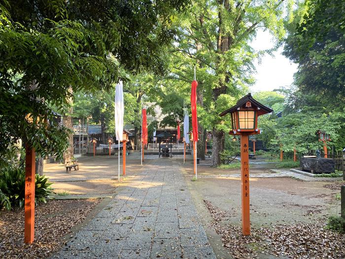 緑雨散歩_e0277800_17285538.jpg